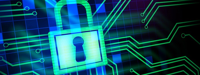 Productivity Benefits of Network Security