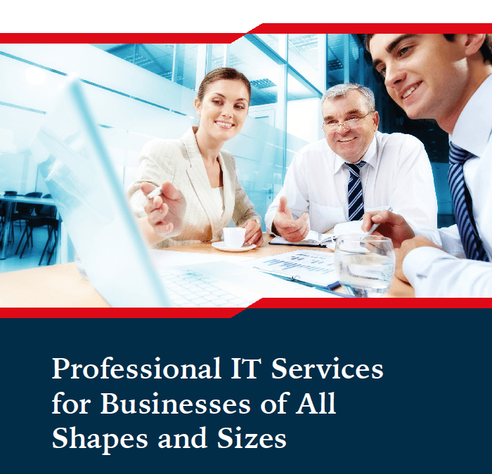 Professional IT Services for Businesses of All Shapes and Sizes